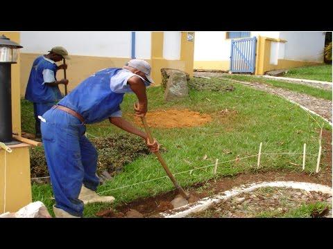 Clique e veja os vídeos da área Curso Profissionalizante CPT Jardineiro
