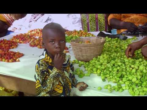 MHJVD - En Faveur Des Oubliés Du Togo (Reportage)