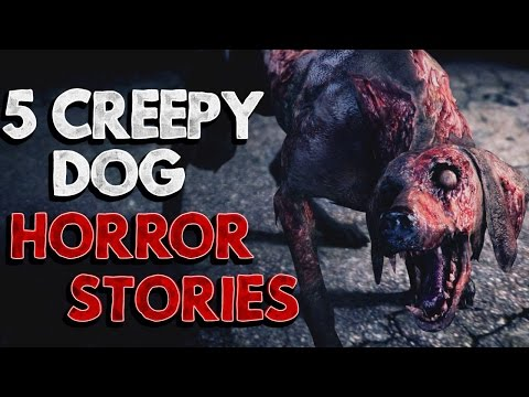 5 Creepy Dog Horror Stories