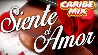 Quino Garcia Feat. Victor Martin, JM Castillo & Shandy Cardenas - Siente El Amor (Official Audio)