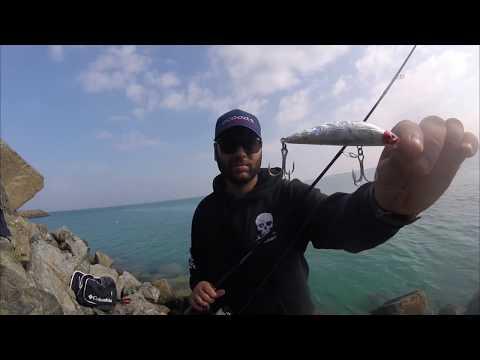 Fishing For Barracuda In Dubai