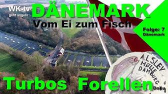 Fischzucht in Dänemark- Vom Ei bis zum Angelteich -Turbos Forelle 2  I Doku/WK-tv/BR/WDR/NDR/Rbb/HD