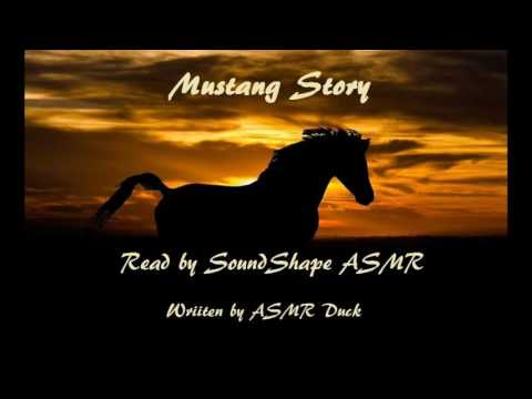 Mustang's Story
