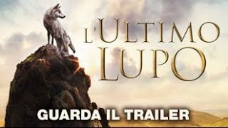 L'ULTIMO LUPO - 3D