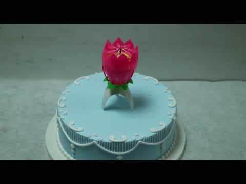 Top seller music single layer lotus flower tripod birthday candle with CE ROHS for birthday candle