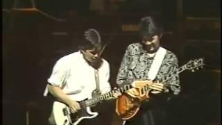 1985年11月28日 新宿厚生年金会館「雨がノックしてる」「Starlight sere...