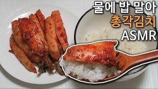 [이팅사운드] 물에 밥말아 총각김치 먹방 ASMR (Korean No talking) Water Rice & Chonggak Kimchi RealSound チョンガーキムチ