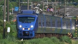 日豊本線 朝の特急列車と貨物列車