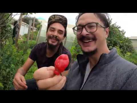 segundo rosero dos mas por favor from YouTube · Duration:  2 minutes 55 seconds