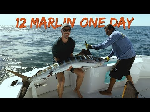 Cabo San Lucas Marlin Fishing - Luxury Yacht