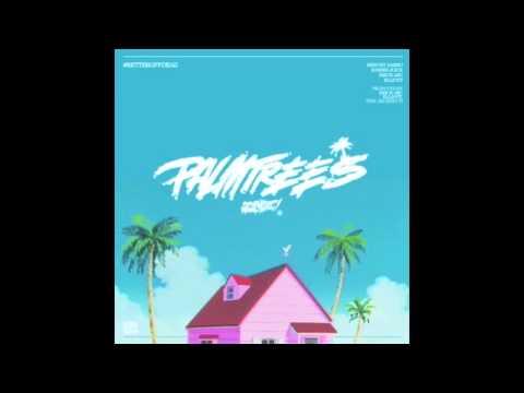 Flatbush ZOMBiES - Palm Trees
