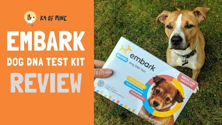Embark Dog DNA Test Breed Identification Kit Review (2019)