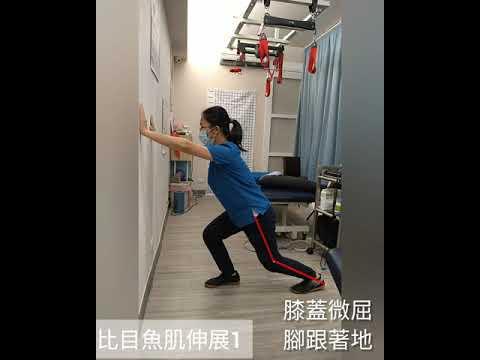 陳年腳踝舊傷之二--伸展與主動收縮