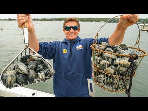 COASTAL Foraging WILD Clams! Catch And Cook HOMEMADE Clam Chowder (New England Pt.5)