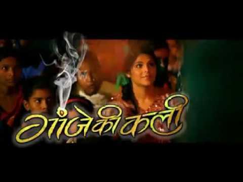 Ganje Ki Kali Promo Video