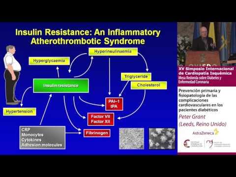 Prevención y fisiopatología de complicaciones cardiovasculares en diabéticos Dr. Peter Grant