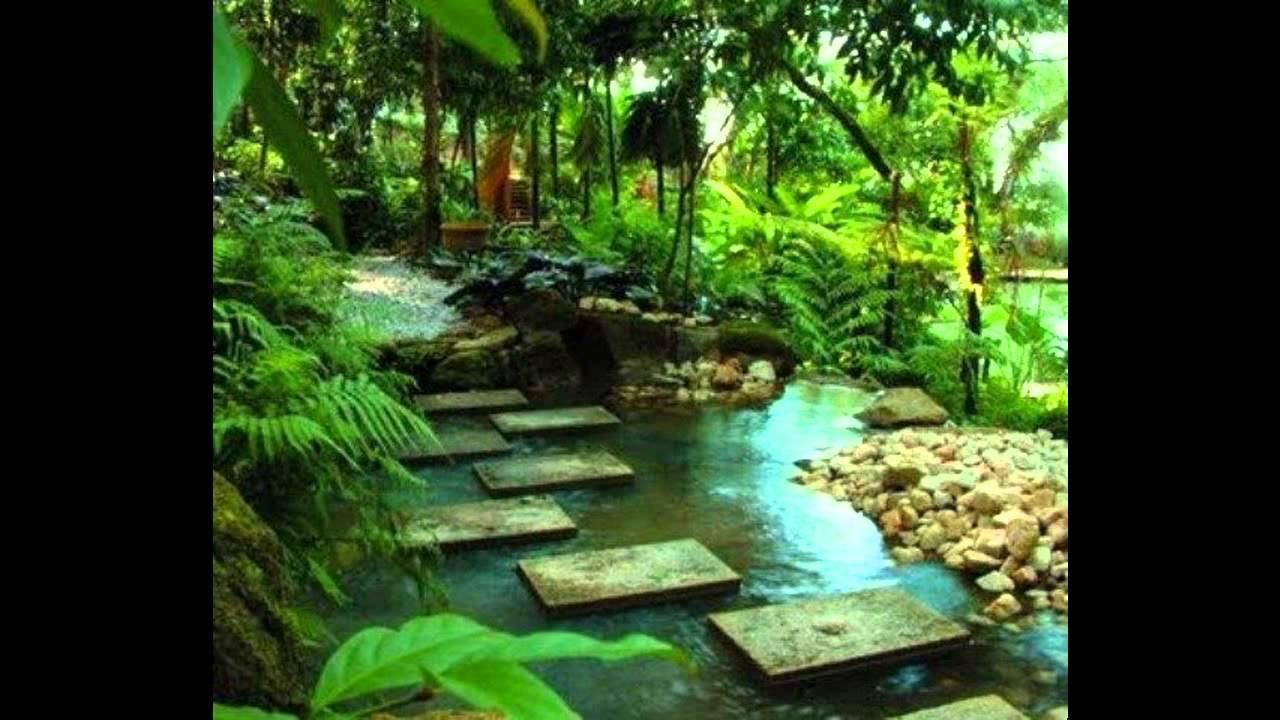 exotic tropical garden designs ideas