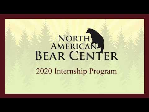 2020  North American Bear Center Internship Program