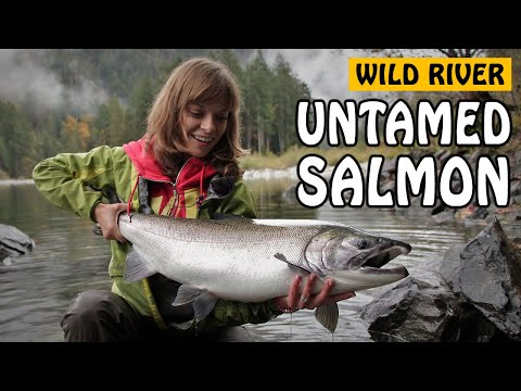 WILD RIVER, UNTAMED COHO - Salmon Fishing At A Secret River On Vancouver Island! | Fishing With Rod