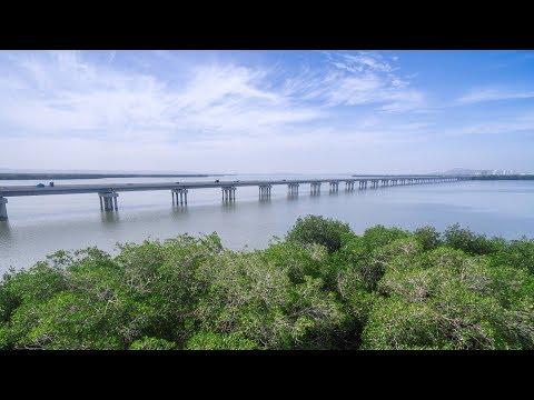 Avance del Proyecto Cartagena Barranquilla y Circunvalar de la Prosperidad - Abril 2018