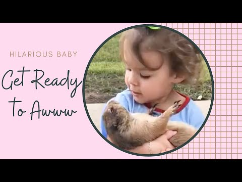 Funniest Baby And Pets Playing Together - Hilarious Fails