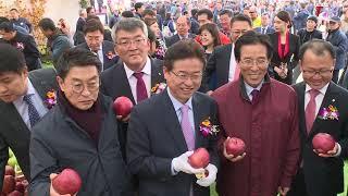 2018 경북 착한사과 페스티벌