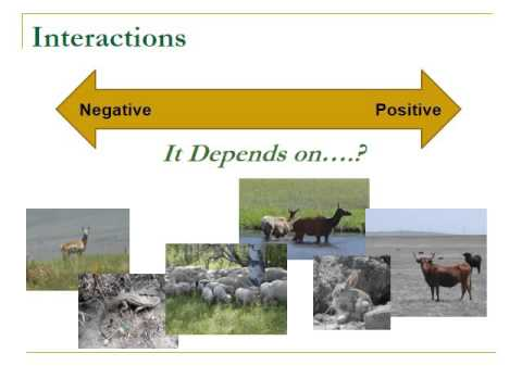 Livestock Wildlife Interactions