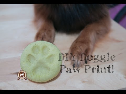 diy-paw-print-(salt-dough-recipe)