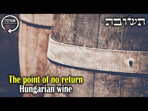 The point of no return | Hungarian wine