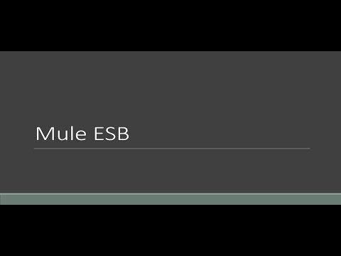 BASE64 Encoder And Decoder Transformer With Mule ESB