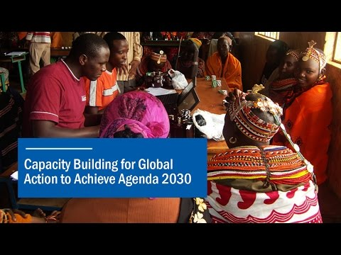 Capacity Building for Global Action to Achieve Agenda 2030