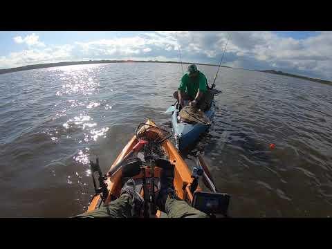 Fishing At Secret Spot...guana...