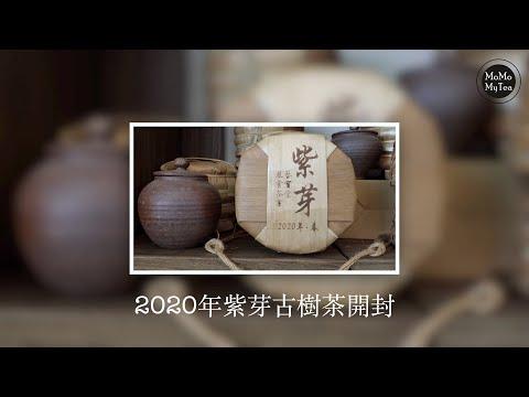 【普洱茶開箱】2020紫芽古樹茶(4K高畫質)