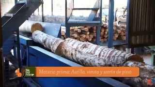 Biomasa: Proceso de fabricación del pellet a partir de la madera de pino