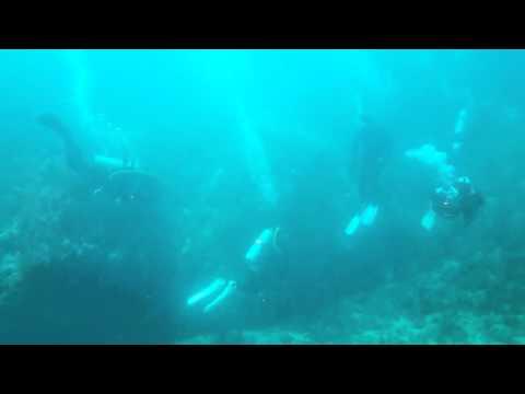 [DeepSea]Scuba Diving - 03 DEC 2015 ~ 08 DEC 2015 2/2
