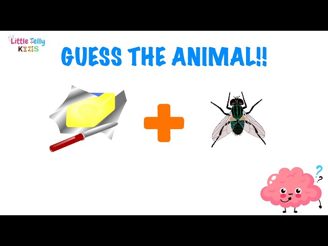 Can you Guess the Animal Name?🧠Brain Game || Tricky Riddles that will test your brain ||Brain Teaser