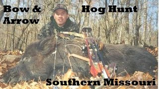 Free Range Archery Hog hunt in Missouri how we hunt public land in the ozarks