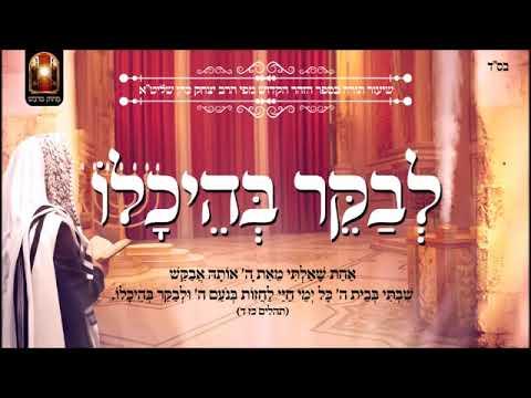 """הרב יצחק כהן שליט""""א - לבקר בהיכלו - הזוהר הקדוש"""