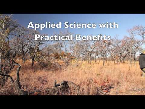 Introduction to Wildlife & Ecological Investments