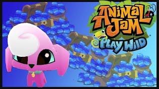 ANIMAL JAM PLAY WÏLD | 50% MORE SAPPHIRES!!!