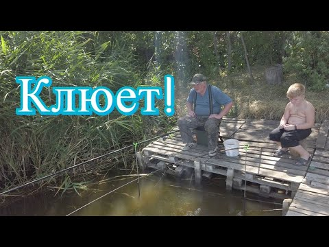 Мишка Журавлев на рыбалке/Чисто мужской отдых/