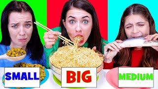 ASMR Big, Medium and Small Plate Challenge by LiliBu