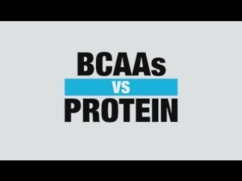 BCAA Supplement vs Protein Supplement Know Your Supps BPI Sports