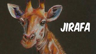 Dibujo una Jirafa | Drawing a Giraffe