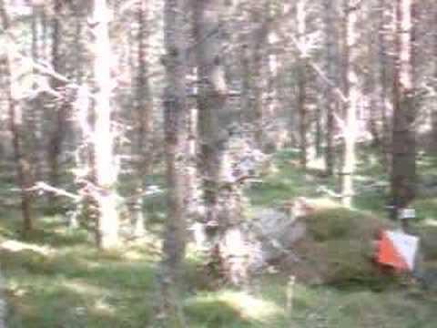 merrick falling over orienteering