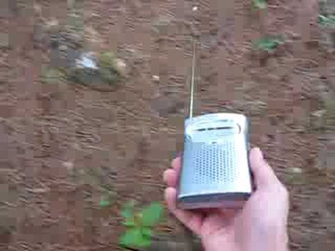 Invisible Fence Detection With Am Radio Youtube