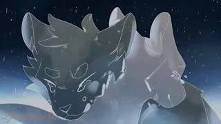 Warriors cats - //Неделимы// - Клип.