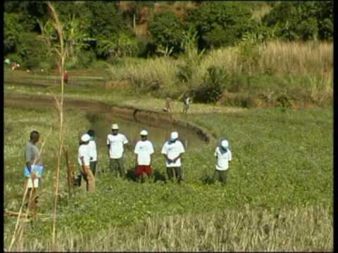 Les Maisons Familiales Rurales de Madagascar 1/3