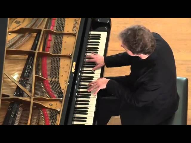 Johan SCHMIDT - Liszt La Campanella