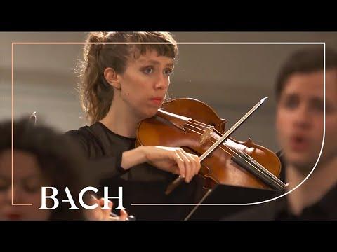 Bach - Ruht wohl, ihr heiligen Gebeine from St John Passion BWV 245 | Netherlands Bach Society